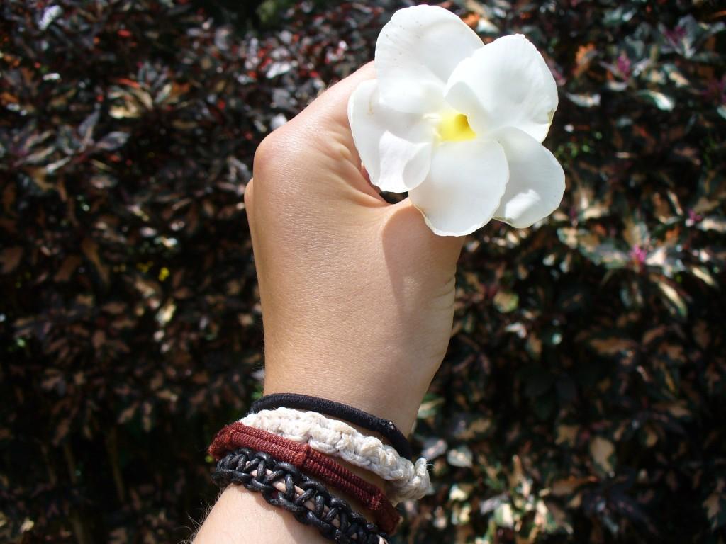 photo hand holding flower