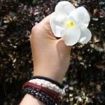 photo hand holding flower